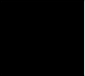 WWP logo web